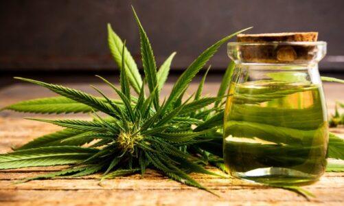 Medical Marijuana FAQ