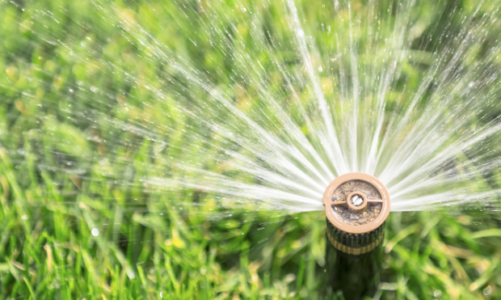 Irrigation Tips and Ideas